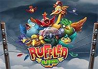Ruffled Up