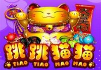 Tiao Tiao Mao Mao