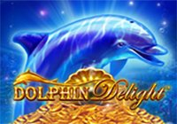 Dolphin Delight