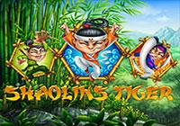 Shaolin`s Tiger